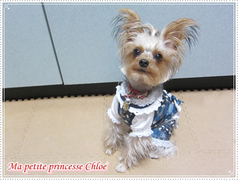 Chloe_3